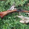 Early Bucks County Fowler/Fusil